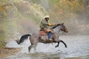 USA, Wyoming, Cowboy rides his horse across river