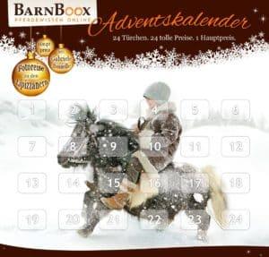 barnboox_adventskalender-2016_05i11i16ii