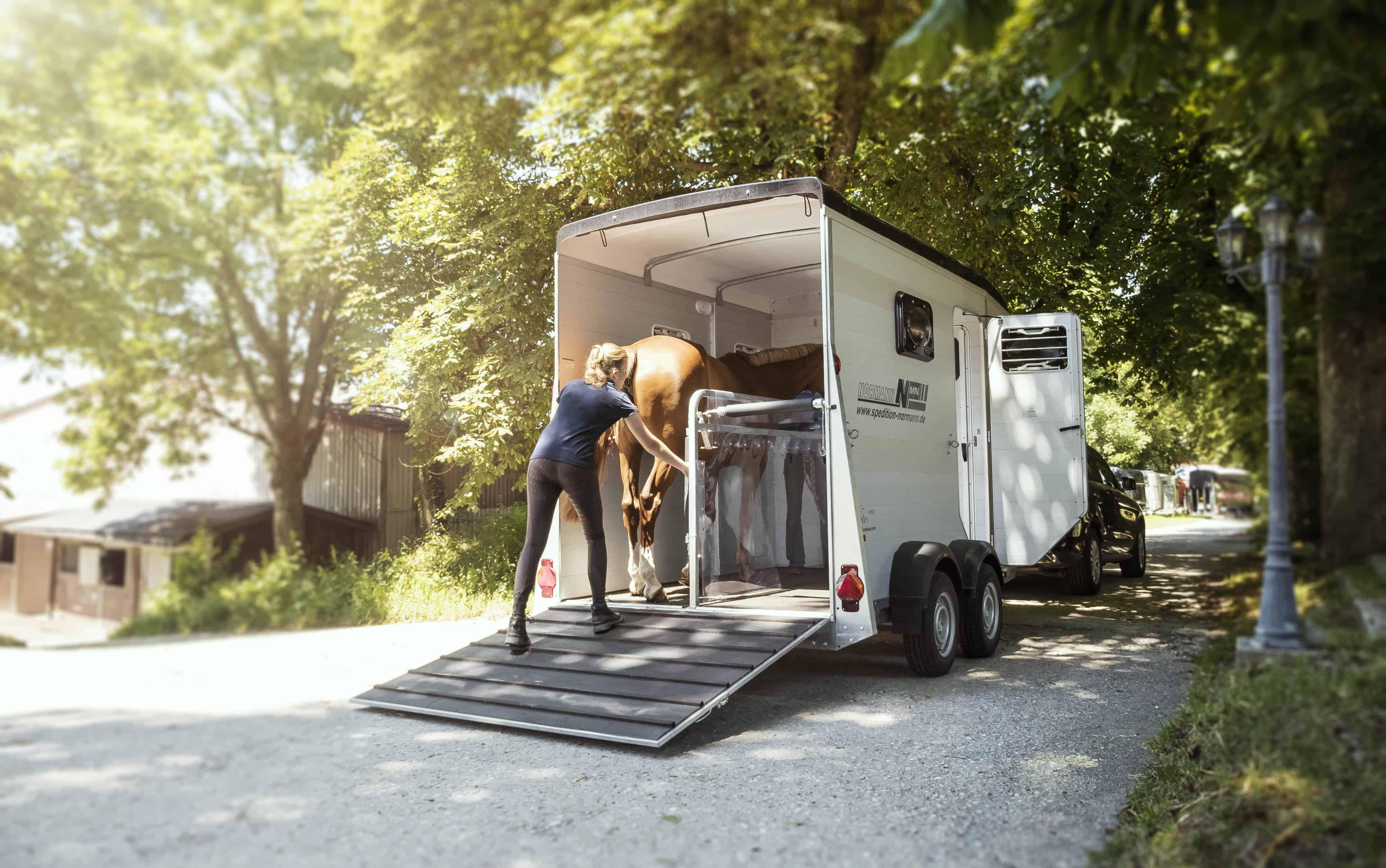 pferdeanh nger kaufen auf was muss ich achten pferdewissen online. Black Bedroom Furniture Sets. Home Design Ideas